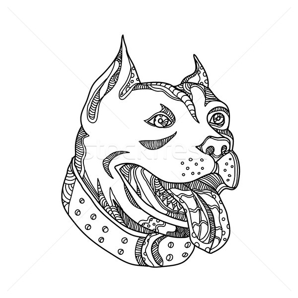 Stock photo: Pit Bull Head Doodle Art
