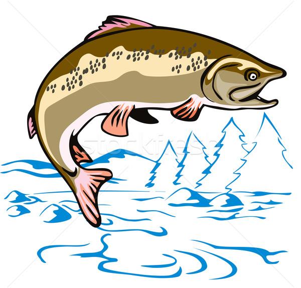Trucha peces saltar ilustración lado estilo retro Foto stock © patrimonio