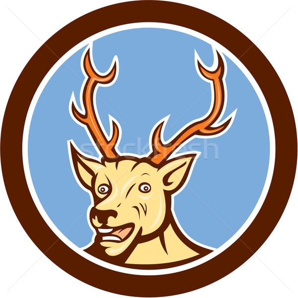 Stag Deer Happy Head Circle Cartoon Stock photo © patrimonio