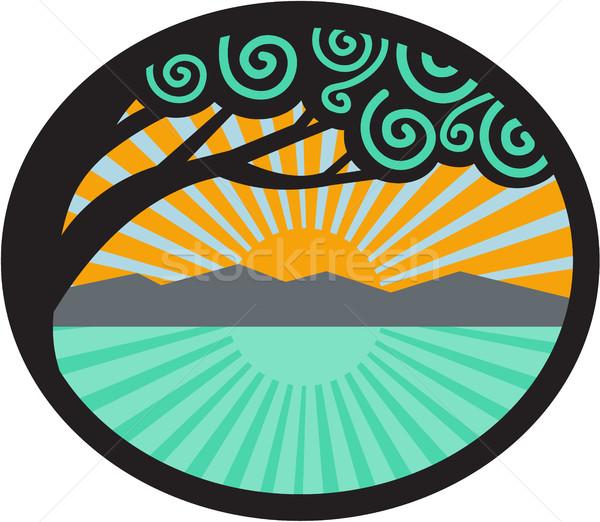 дерево горные морем Восход овальный ретро Сток-фото © patrimonio