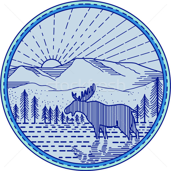 Moose River Flat Mountains Sunburst Circle Mono Line Stock photo © patrimonio
