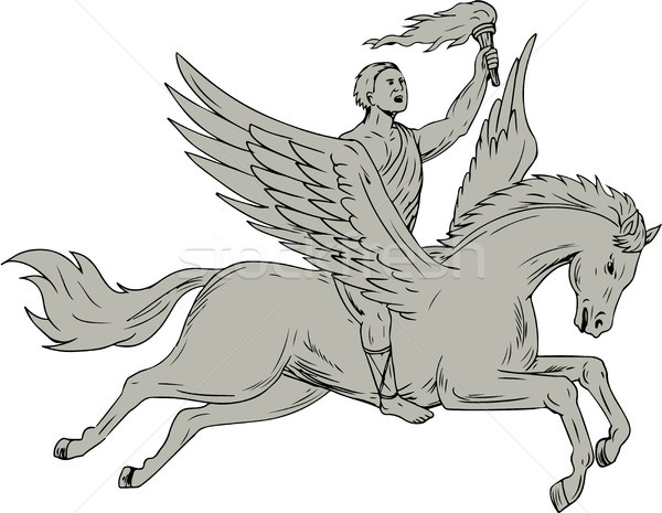 Bellerophon Riding Pegasus Holding Torch Drawing Stock photo © patrimonio