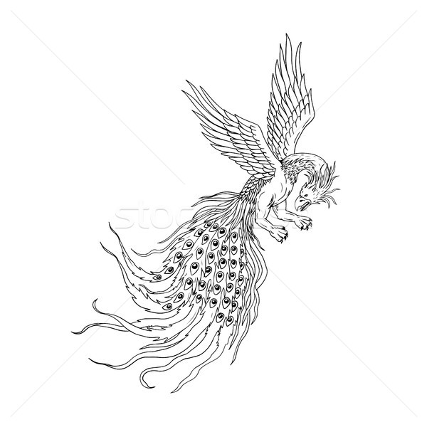 Simorgh or Simurgh Flying Drawing Stock photo © patrimonio