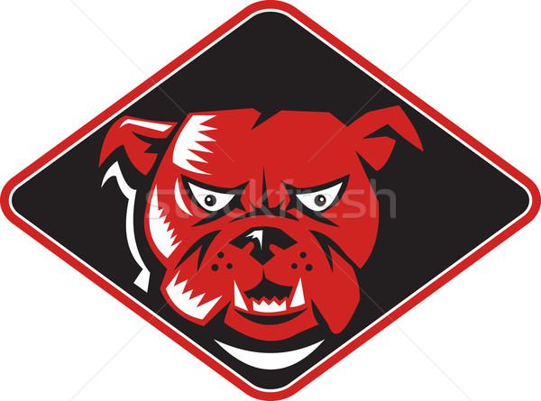Angry Bulldog Head Front Retro Stock photo © patrimonio