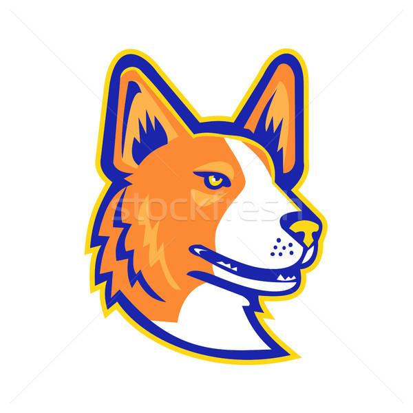 Cardigã cabeça mascote ícone ilustração cão Foto stock © patrimonio