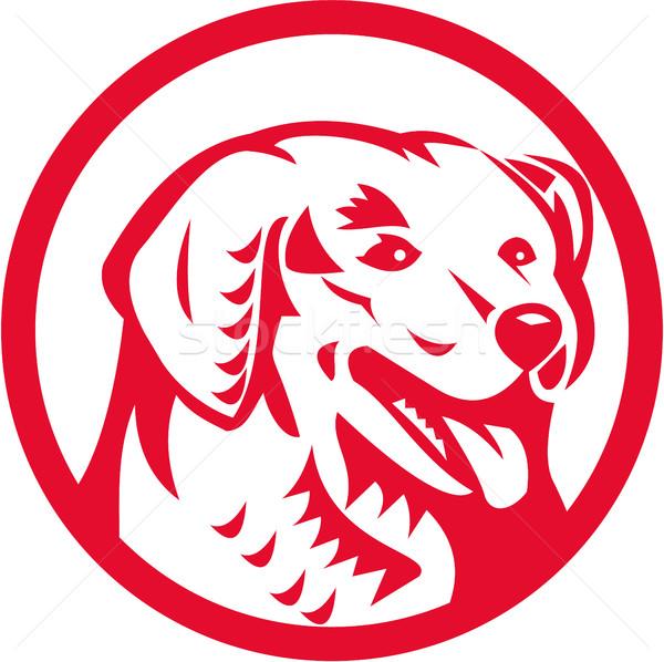 Hond hoofd cirkel retro illustratie oude Stockfoto © patrimonio