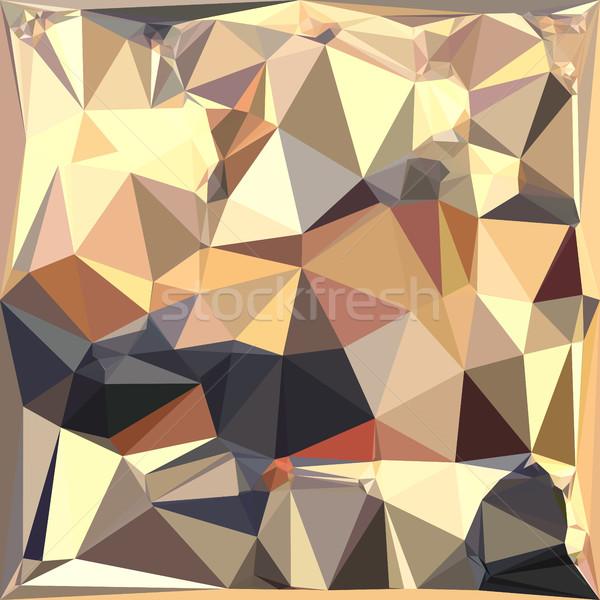 серый аннотация низкий многоугольник стиль иллюстрация Сток-фото © patrimonio