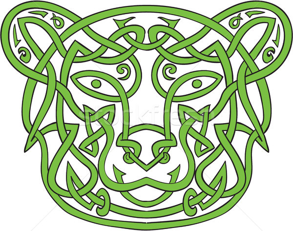 Bear Celtic Knot  Stock photo © patrimonio