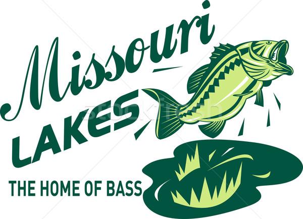 低音 ミズーリ州 実例 ジャンプ 単語 ホーム ストックフォト © patrimonio