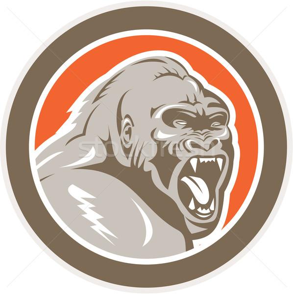 Mérges gorilla fej kör retro illusztráció Stock fotó © patrimonio