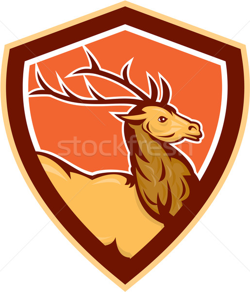 Deer Stag Buck Head Shield Retro Stock photo © patrimonio