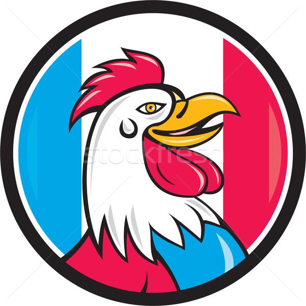 французский петух голову Франция флаг круга Сток-фото © patrimonio