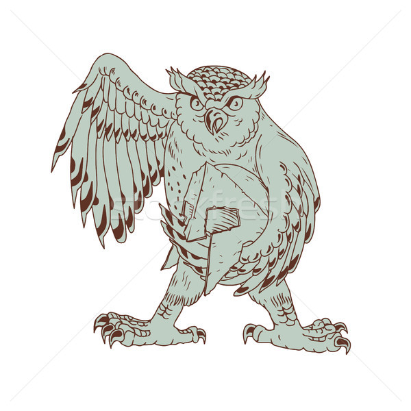 Owl Holding Spartan Helmet Drawing Stock photo © patrimonio