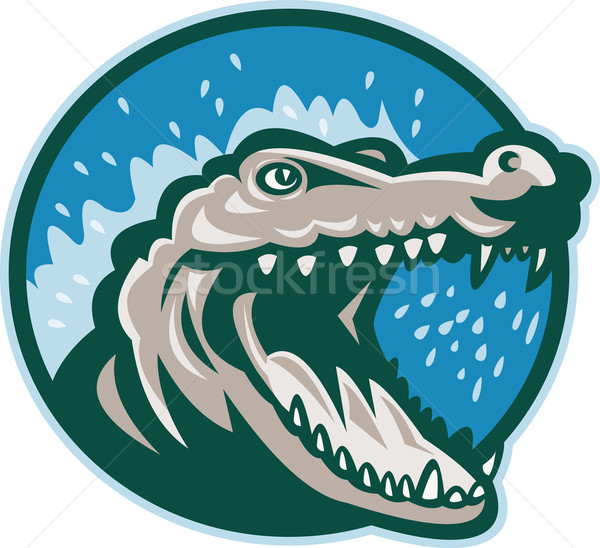 Zangado crocodilo jacaré cabeça ilustração jacaré Foto stock © patrimonio