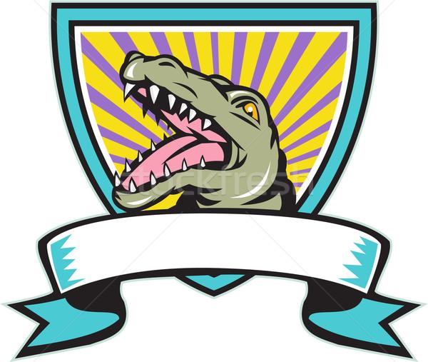 аллигатор гребень ретро иллюстрация сердиться gator Сток-фото © patrimonio
