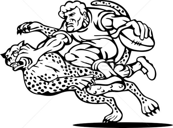 Rugby oyuncu çita örnek çalışma top Stok fotoğraf © patrimonio