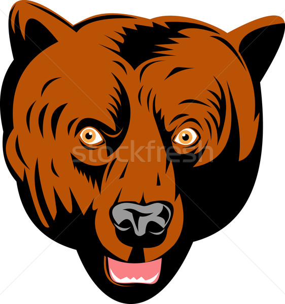 grizzly brown bear head facing front Stock photo © patrimonio