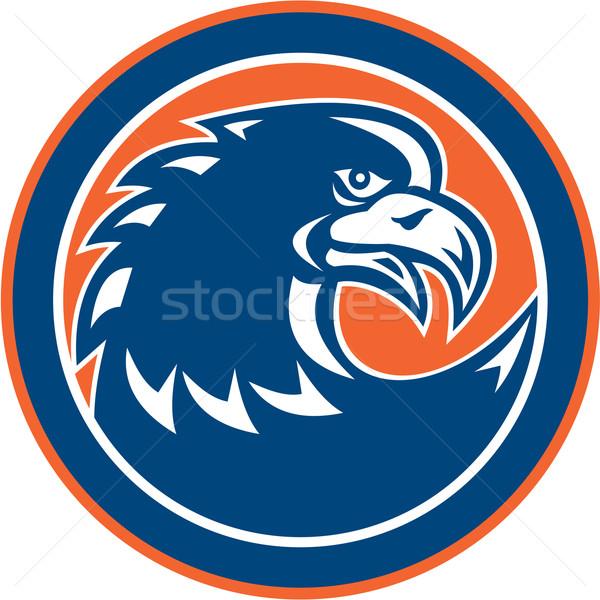 Bald Eagle Head Spiky Neck Circle Retro Stock photo © patrimonio