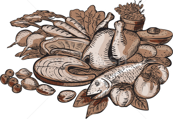 Paleo dieta feito à mão estilo ilustração Foto stock © patrimonio