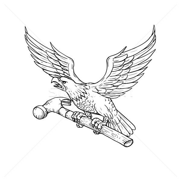 Eagle Clutching Hammer Drawing Stock photo © patrimonio