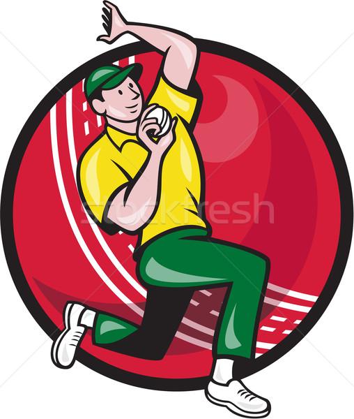 Krykieta szybko melonik bowling ball strona ilustracja Zdjęcia stock © patrimonio