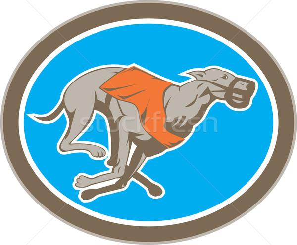 Greyhound Dog Racing Circle Retro Stock photo © patrimonio