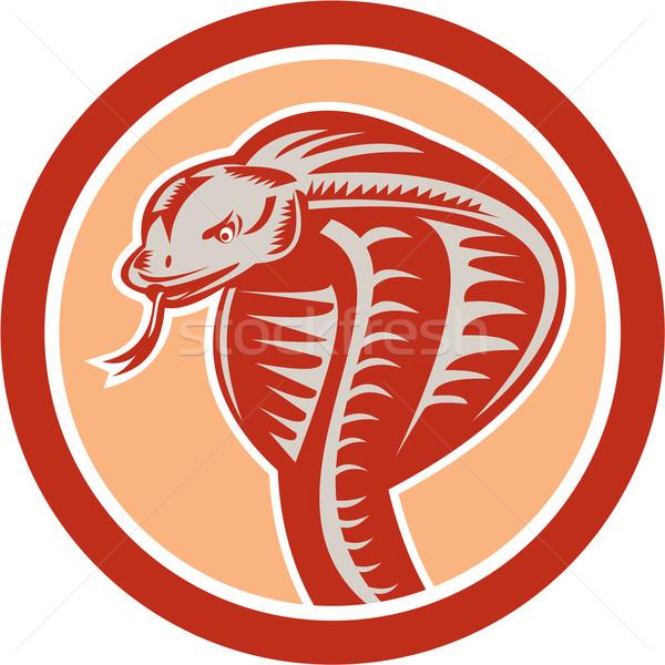 Zdjęcia stock: Kobra · węża · głowie · kółko · retro · ilustracja