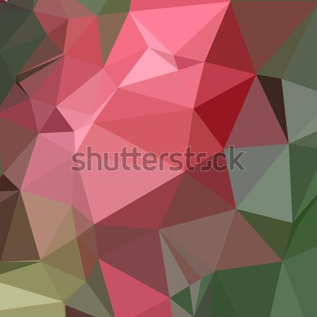 Congo rosa resumen bajo polígono estilo Foto stock © patrimonio