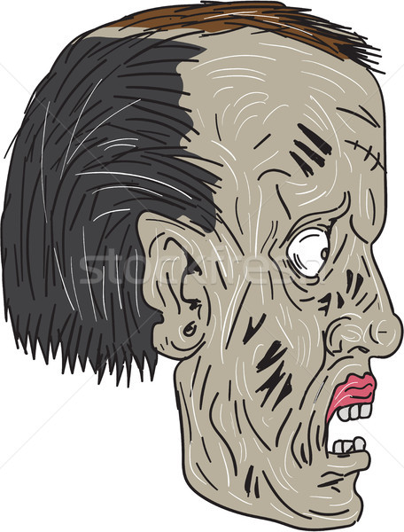 зомби голову сторона рисунок эскиз стиль Сток-фото © patrimonio