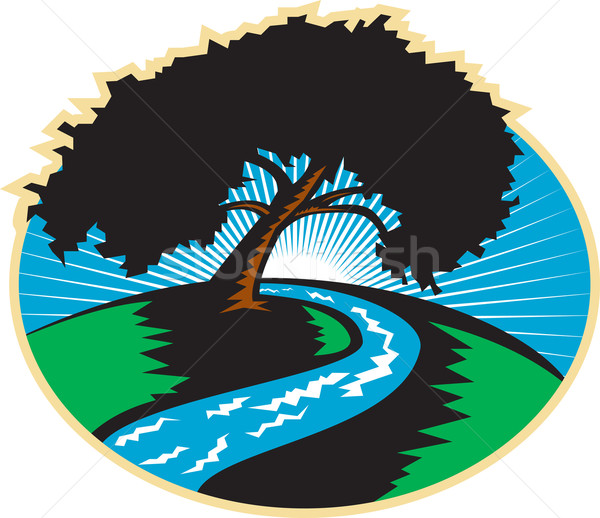 Pecan Tree Winding River Sunrise Retro Stock photo © patrimonio