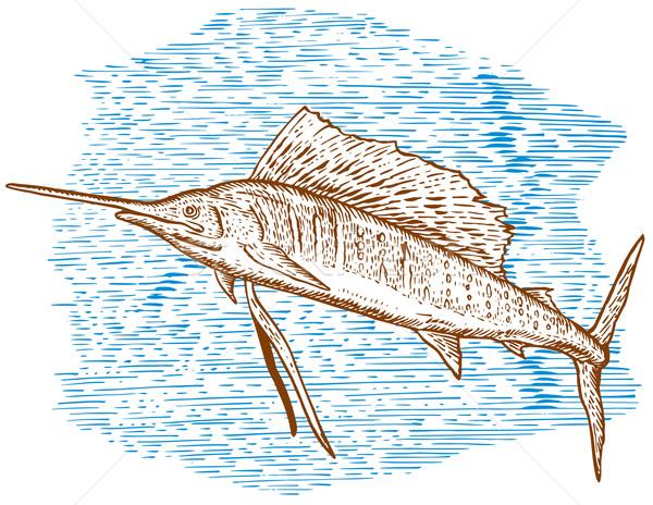 Balık atlama kroki örnek yan Stok fotoğraf © patrimonio