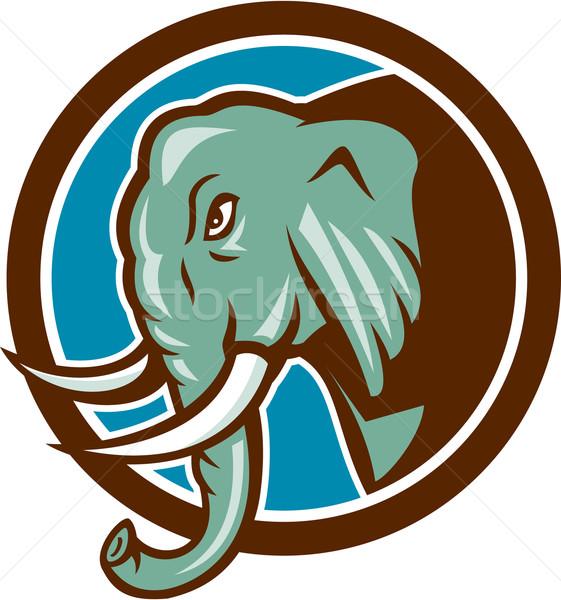 Elefánt fej oldal kör rajz illusztráció Stock fotó © patrimonio