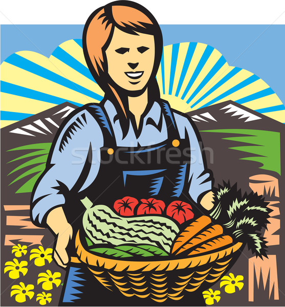 Organique agriculteur ferme produire récolte rétro Photo stock © patrimonio
