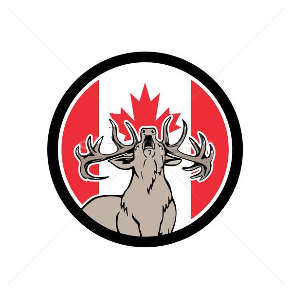 Canadian Stag Deer Canada Flag Icon Stock photo © patrimonio