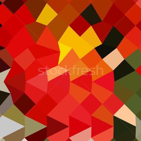 Lava Red Abstract Low Polygon Background Stock photo © patrimonio