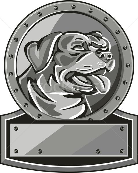 Rottweiler őrkutya pajzs fémes kör retro Stock fotó © patrimonio