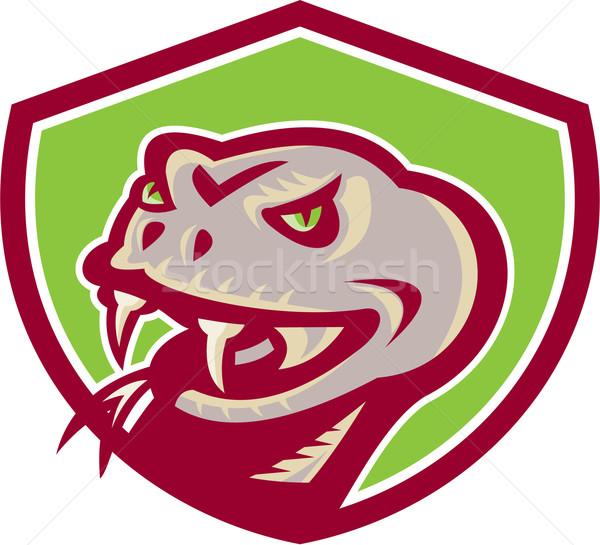 Viper Snake Serpent Head Shield Retro Stock photo © patrimonio