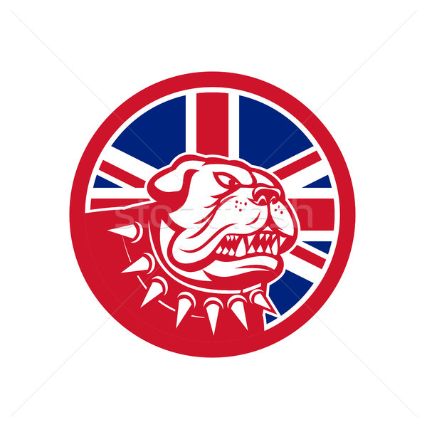 Brits bulldog hoofd union jack vlag icon Stockfoto © patrimonio