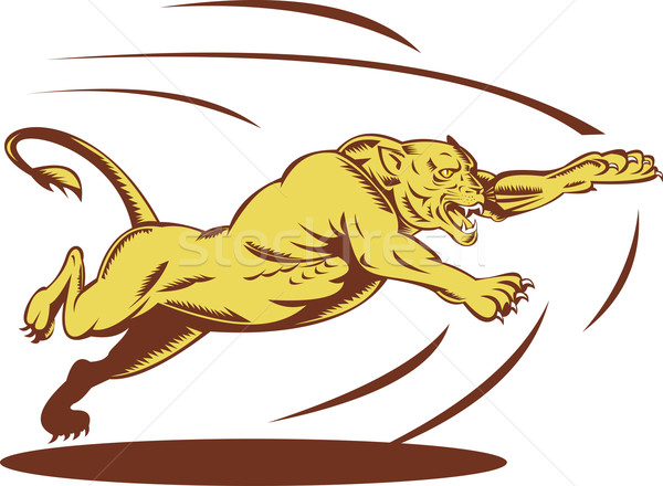 Lioness jumping and attacking Stock photo © patrimonio