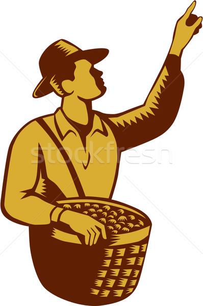 Fruit Picker Worker Pointing Woodcut Stock photo © patrimonio