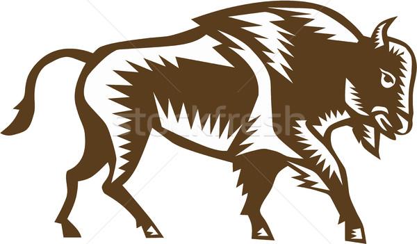 American Bison Woodcut Stock photo © patrimonio