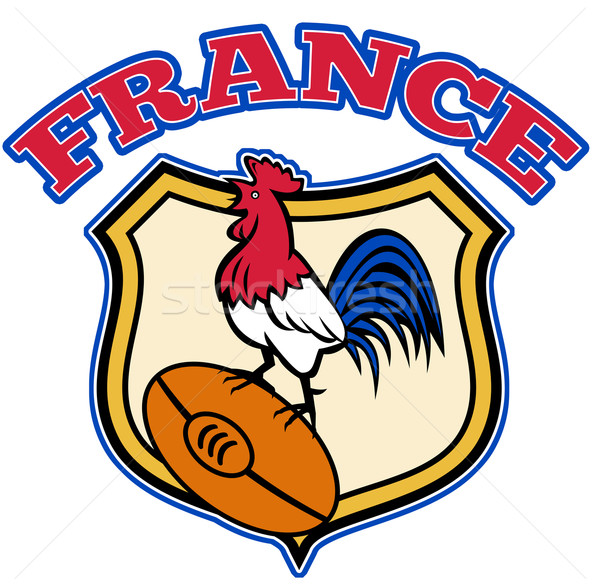France Rugby Rooster cockerel ball and shield Stock photo © patrimonio
