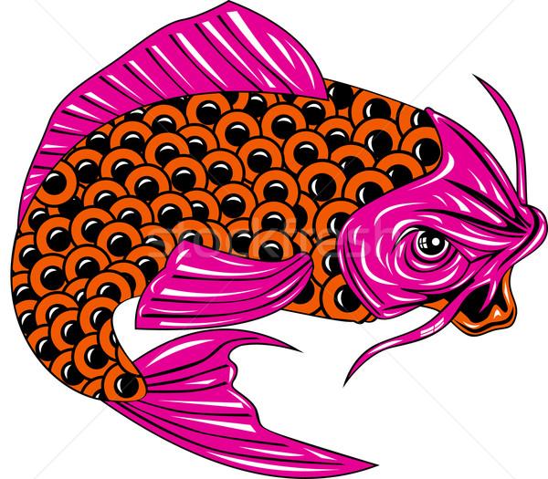 Koi Carp Fish Jumping Stock photo © patrimonio