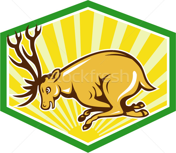 Stag Deer Charging Side Cartoon Stock photo © patrimonio