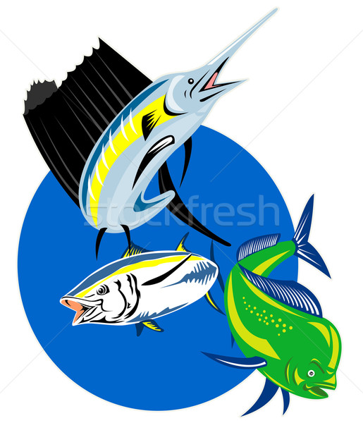 Sailfish dorado dolphin fish and yellow fin tuna Stock photo © patrimonio