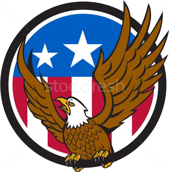 Kopasz sas szárnyak USA zászló kör Stock fotó © patrimonio