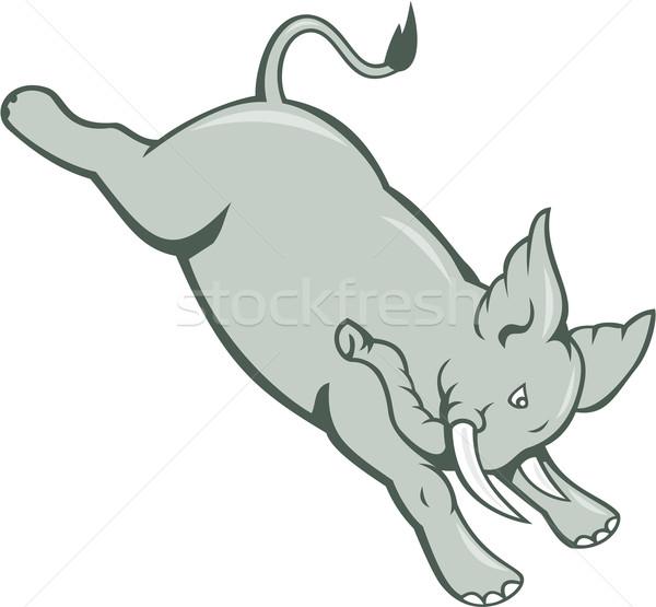 Elephant Jumping Bucking Isolated Cartoon Stock photo © patrimonio