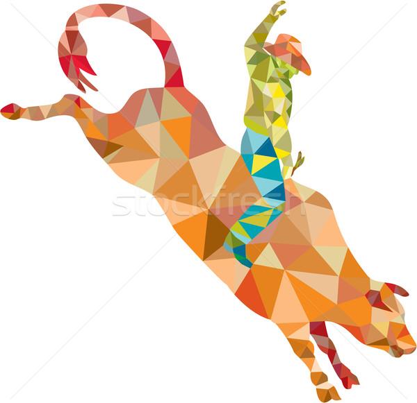 Rodeo kovboy boğa binicilik düşük çokgen Stok fotoğraf © patrimonio