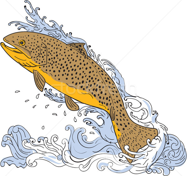 Brown Trout Swimming Up Turbulent Water Drawing Stock photo © patrimonio
