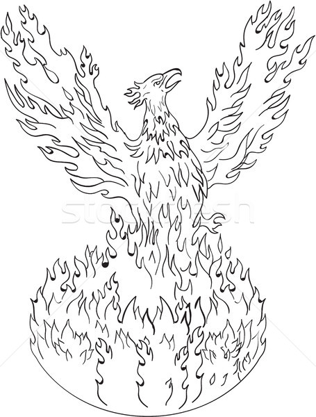 Phoenix Rising Fiery Flames Black and White Drawing Stock photo © patrimonio